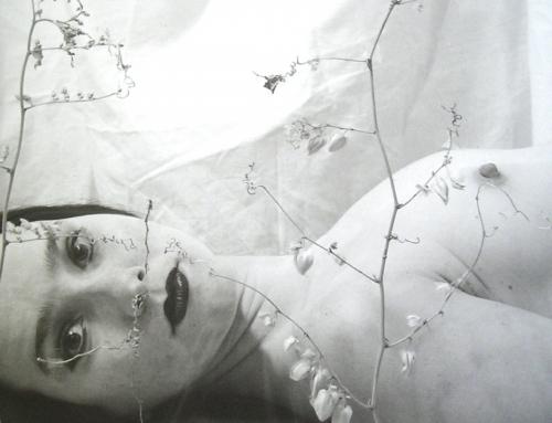 LA MARCA DE SU CICATRIZ. HISTORIA Y METÁFORA EN LA FOTOGRAFÍA CUBANA CONTEMPORÁNEA